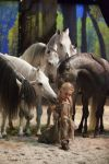 The world-renowned equestrian spectacular, Cavalia, is currently hosting their amazing show in Tampa, FL.