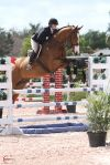 Caitlin Boyle and Loredo competing the equitation at the Winter Equestrian Festival.