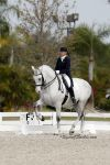 Janne Rumbough and Junior in their first CDI Grand Prix