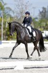 Shelly Francis and Danilo take first in the Prix St. Georges